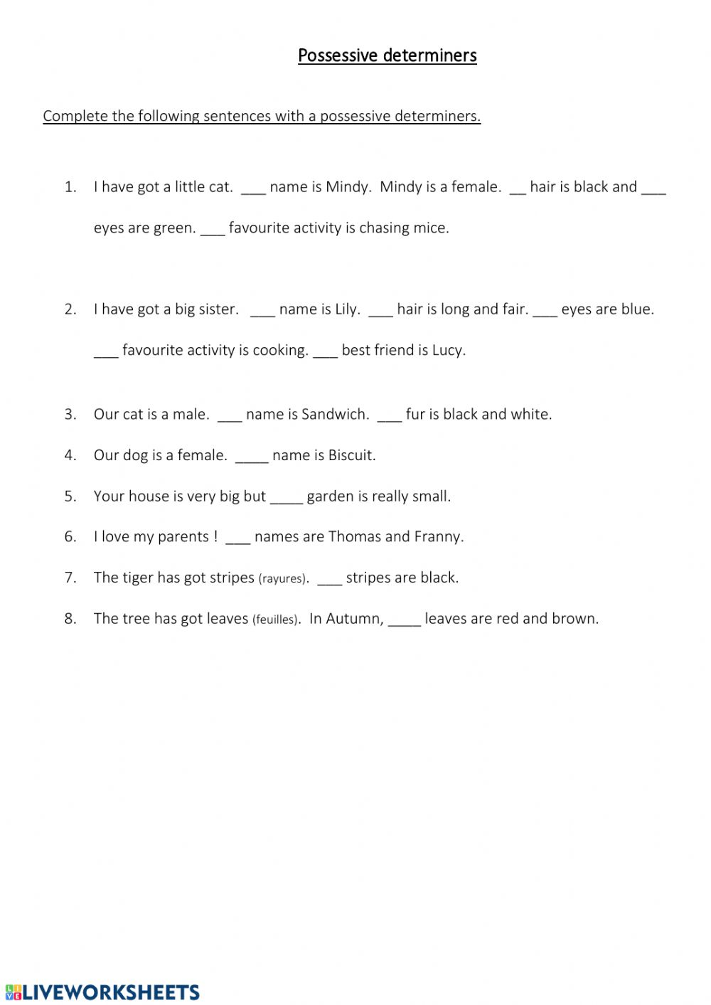 hight resolution of Possessive Determiners activity