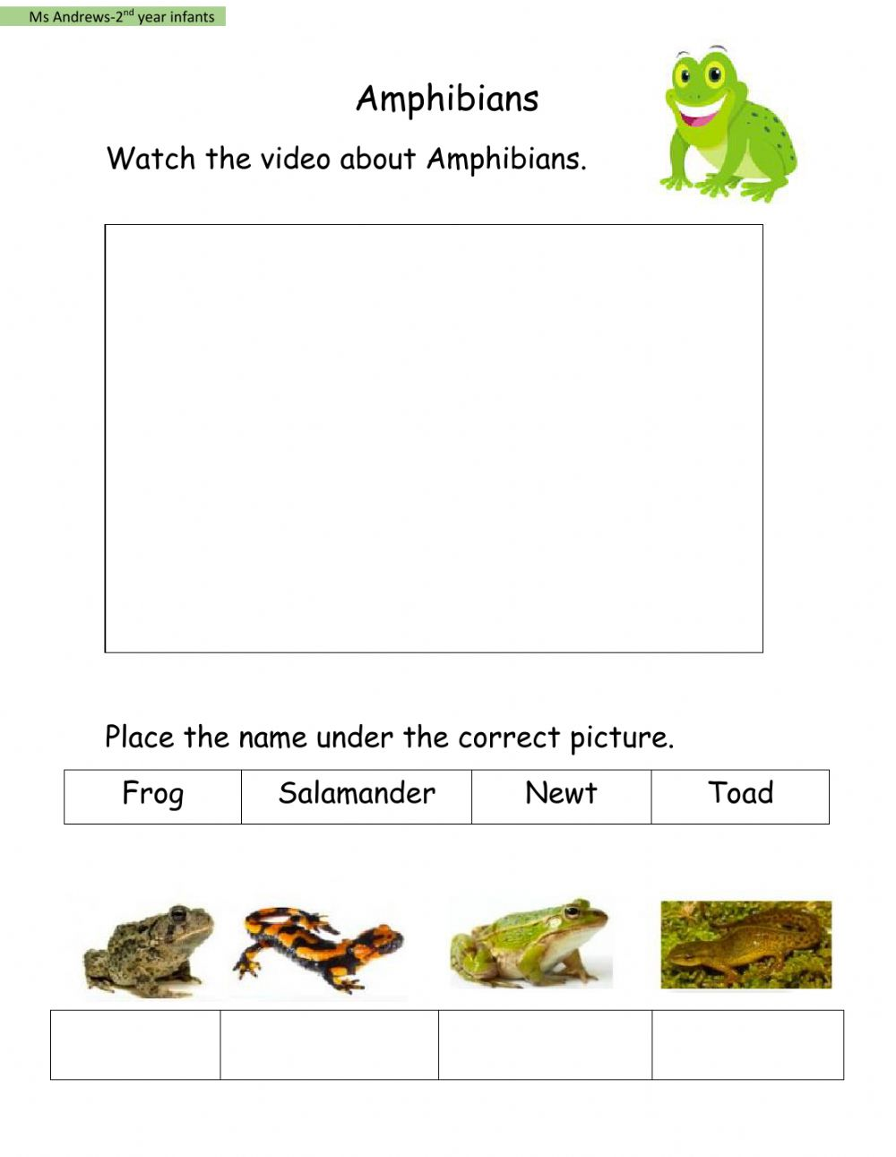 hight resolution of Amphibians activity for 2nd year