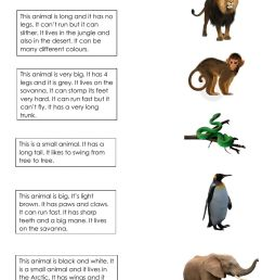 Animals online exercise for First grade [ 1413 x 1000 Pixel ]