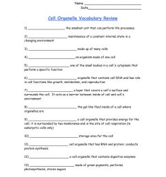 Cell Organelle Vocabulary worksheet [ 1291 x 1000 Pixel ]