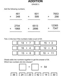 Addition Worksheet Grade 5 worksheet [ 1291 x 1000 Pixel ]