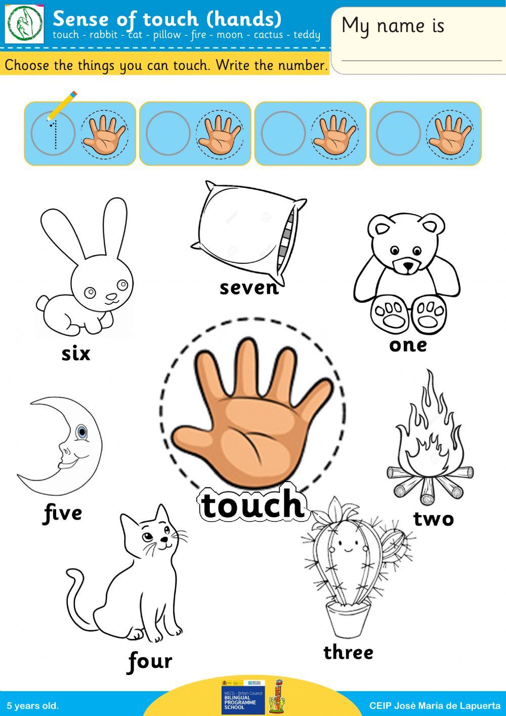 hight resolution of Sense of touch interactive worksheet