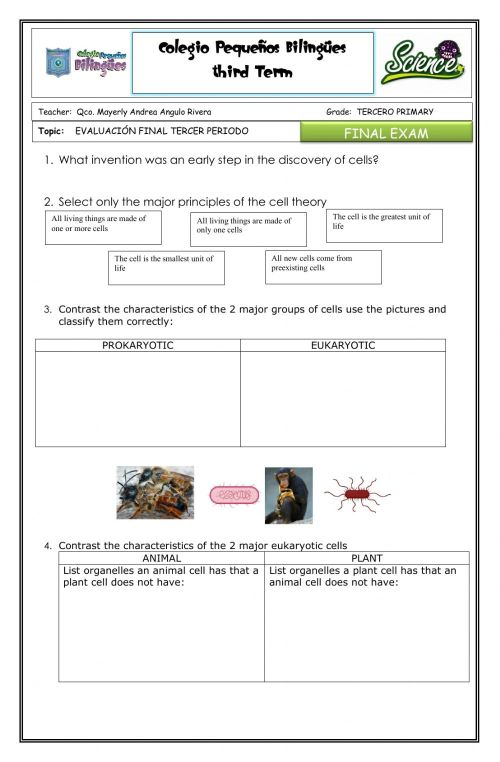 small resolution of Final exam tercero- second term - science - worksheet