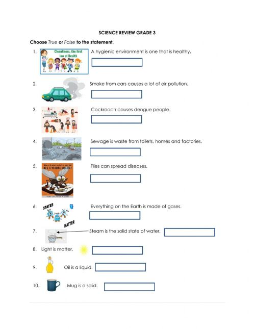 small resolution of Science review grade 3 worksheet