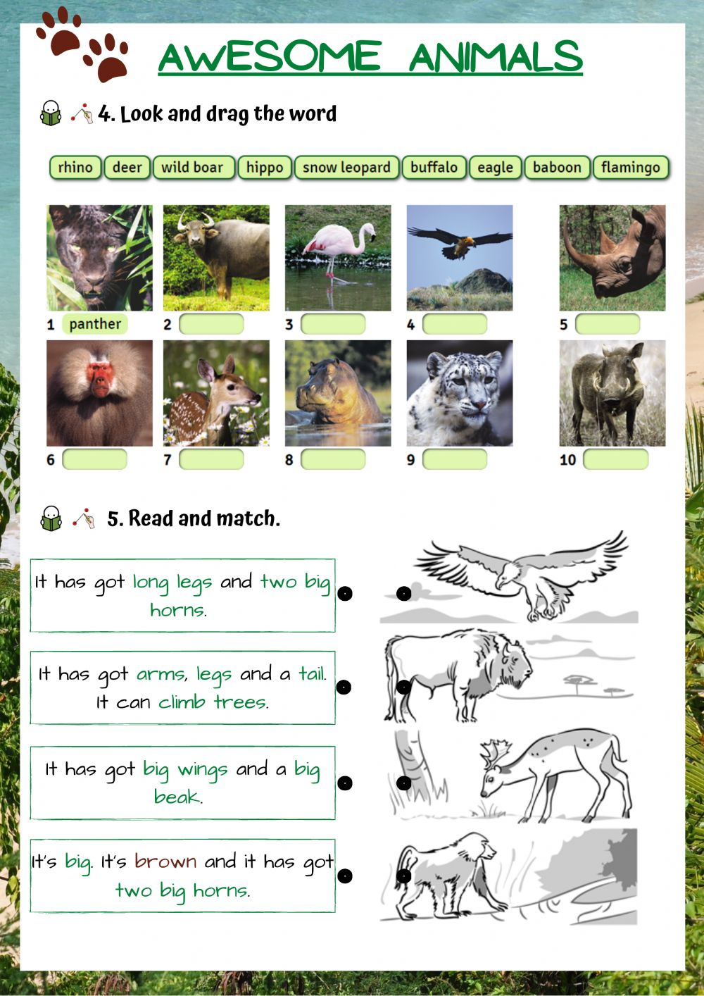 hight resolution of Wild animals online exercise for Grade 5