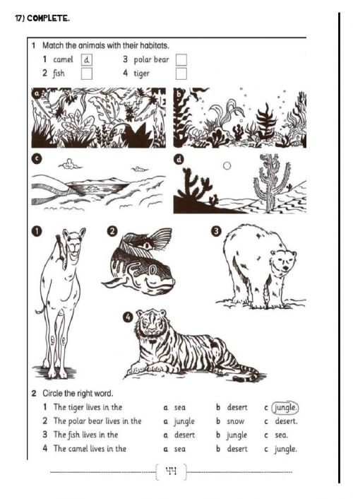 small resolution of Animals online exercise for 4th
