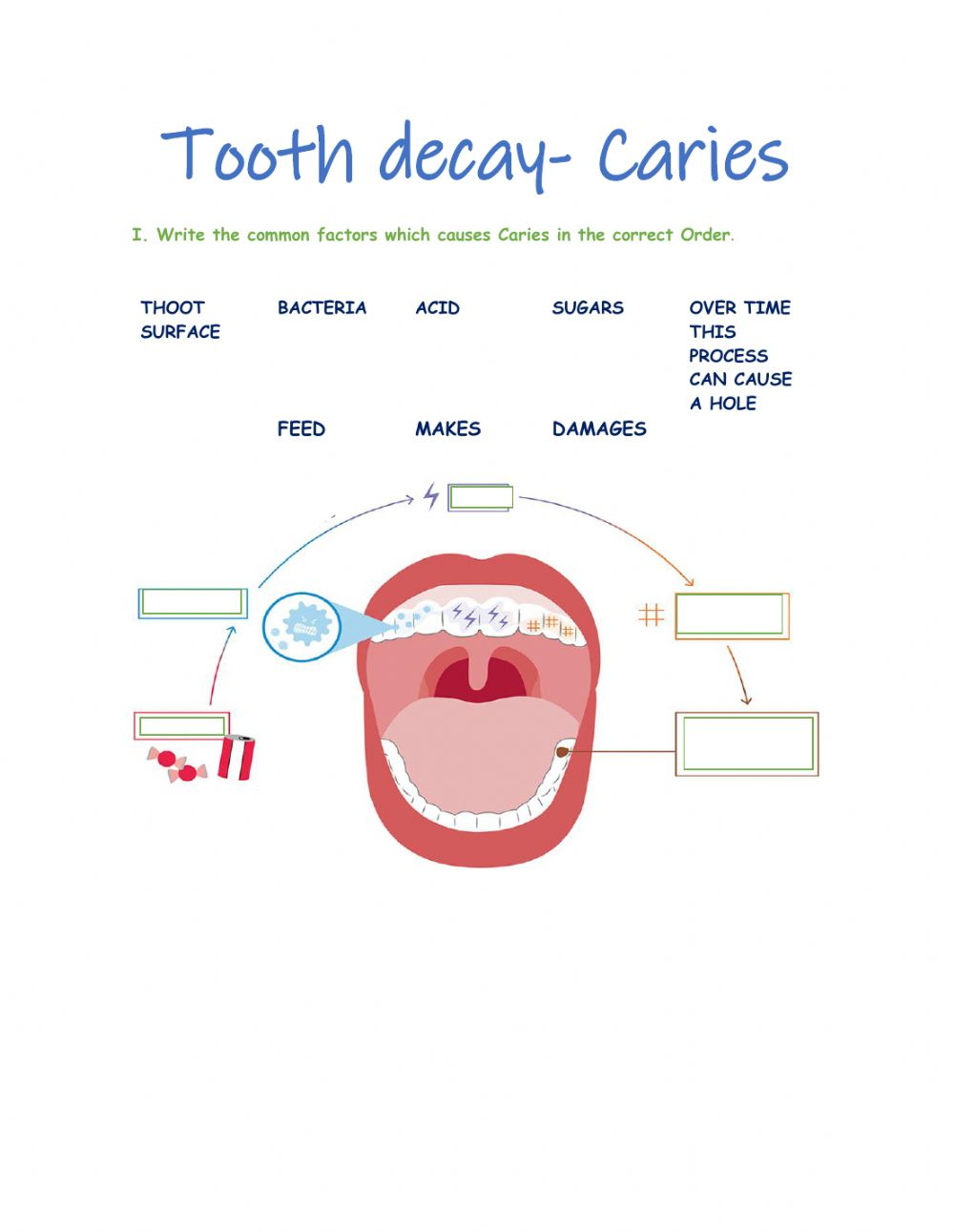 hight resolution of Caries interactive worksheet