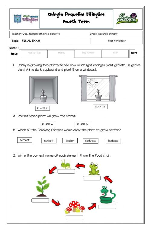 small resolution of Final exam -second grade- fourth term -2020 worksheet