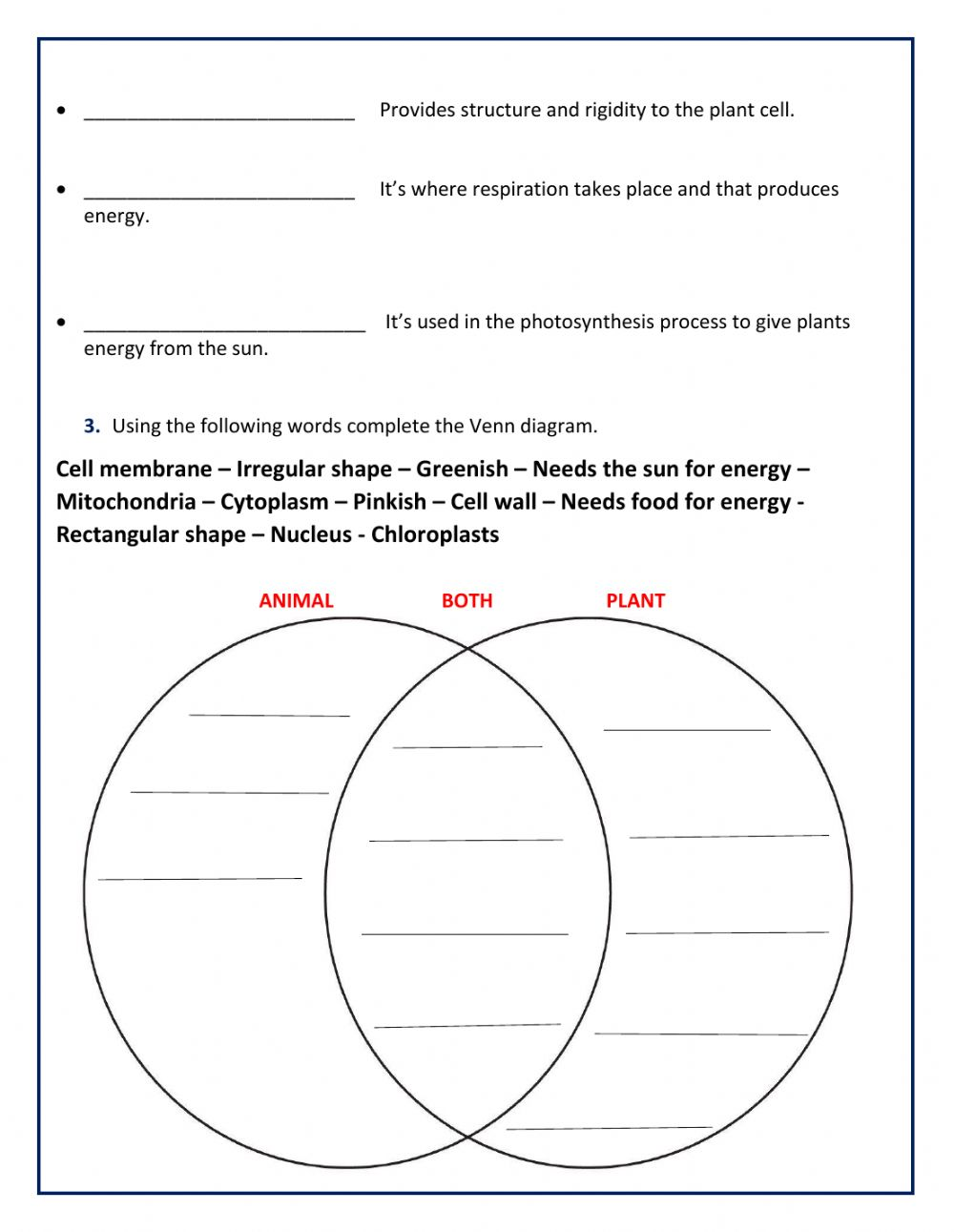 hight resolution of Animal and Plant Cell worksheet