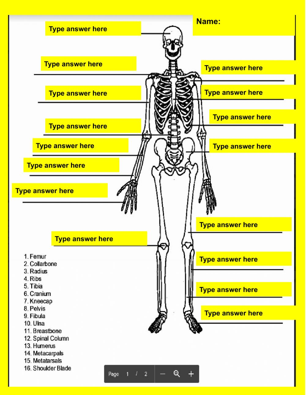 hight resolution of Skeletal System online activity for 7