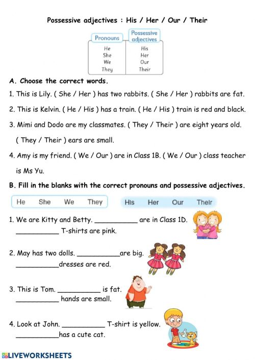 small resolution of Pronouns and Pronoun Adjectives worksheet