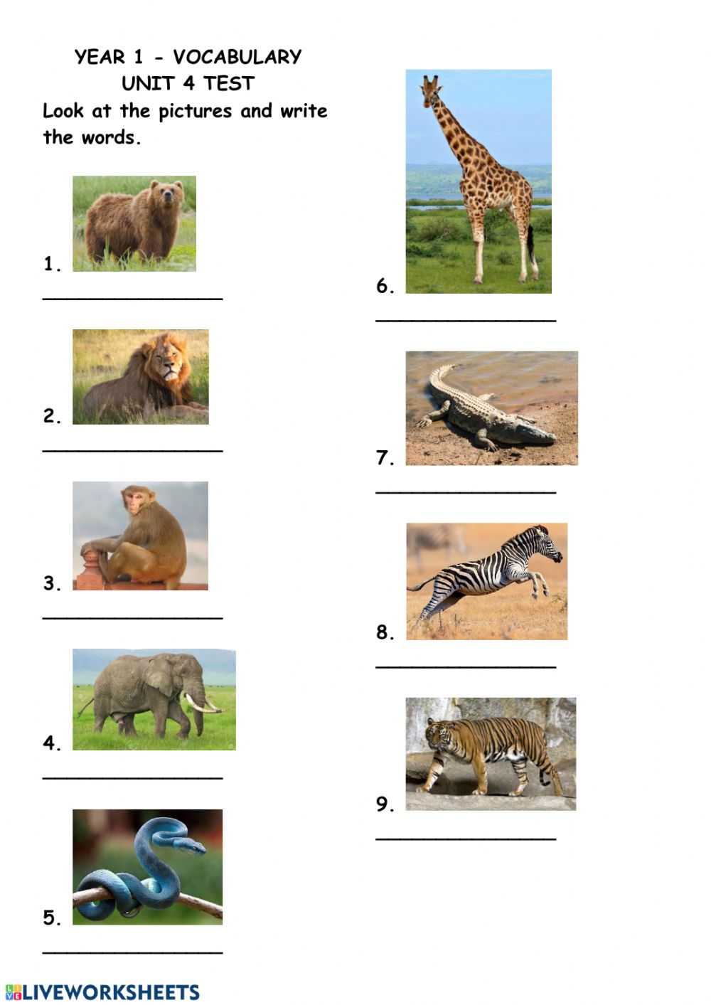 hight resolution of Wild animals interactive exercise