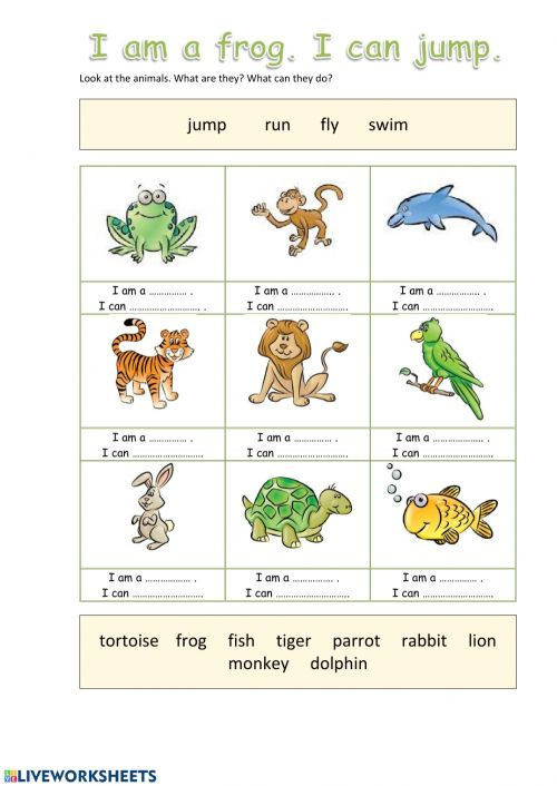 small resolution of Animals online worksheet for Grade 1