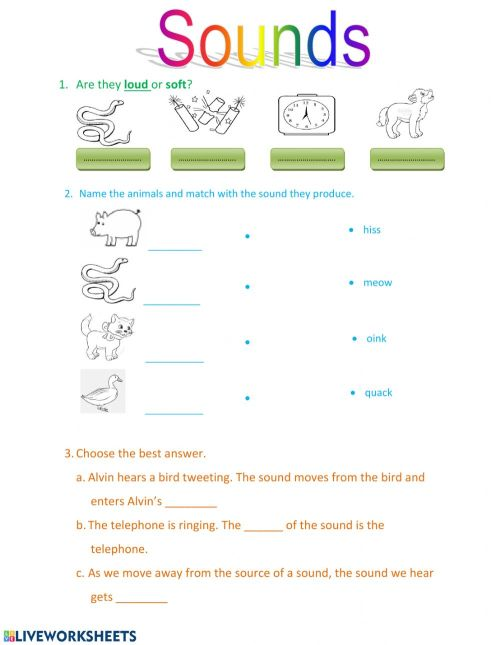 small resolution of Sound worksheet