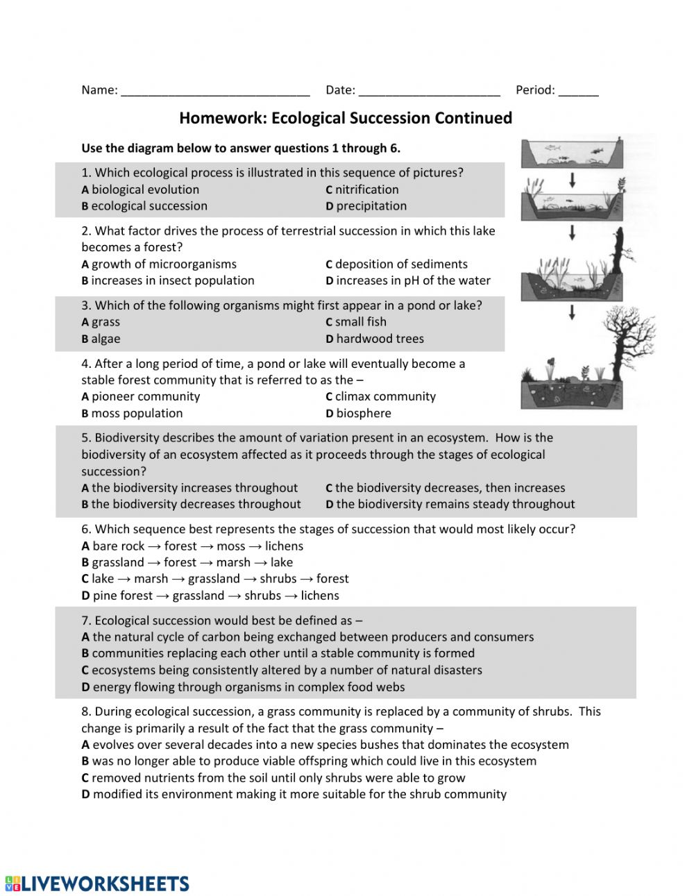 Ecological Succession Worksheet Answer Key : ecological, succession, worksheet, answer, Succession, Worksheet