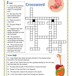 Digestive System Crossword worksheet [ 1413 x 1000 Pixel ]