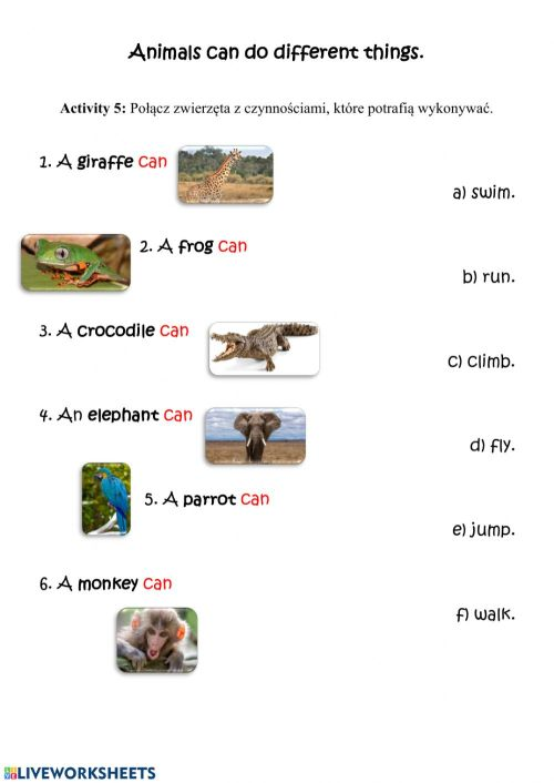small resolution of Animals' movement worksheet