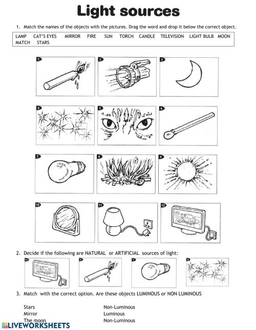 small resolution of Sources of light interactive worksheet