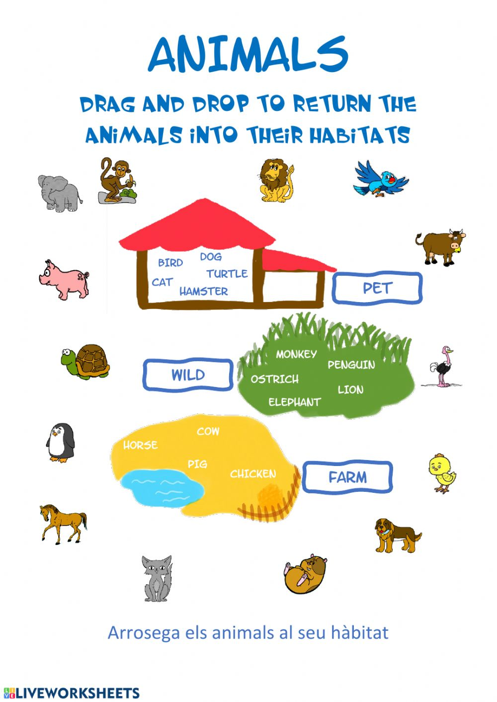 medium resolution of Animals habitat worksheet