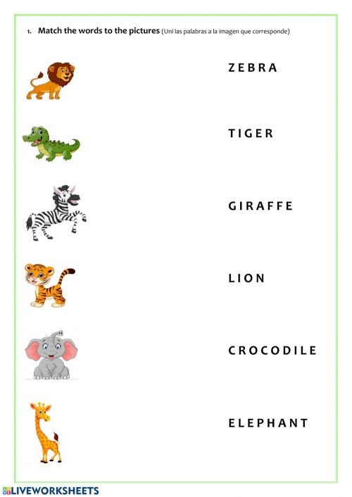 small resolution of Wild animals online worksheet for 3rd grade