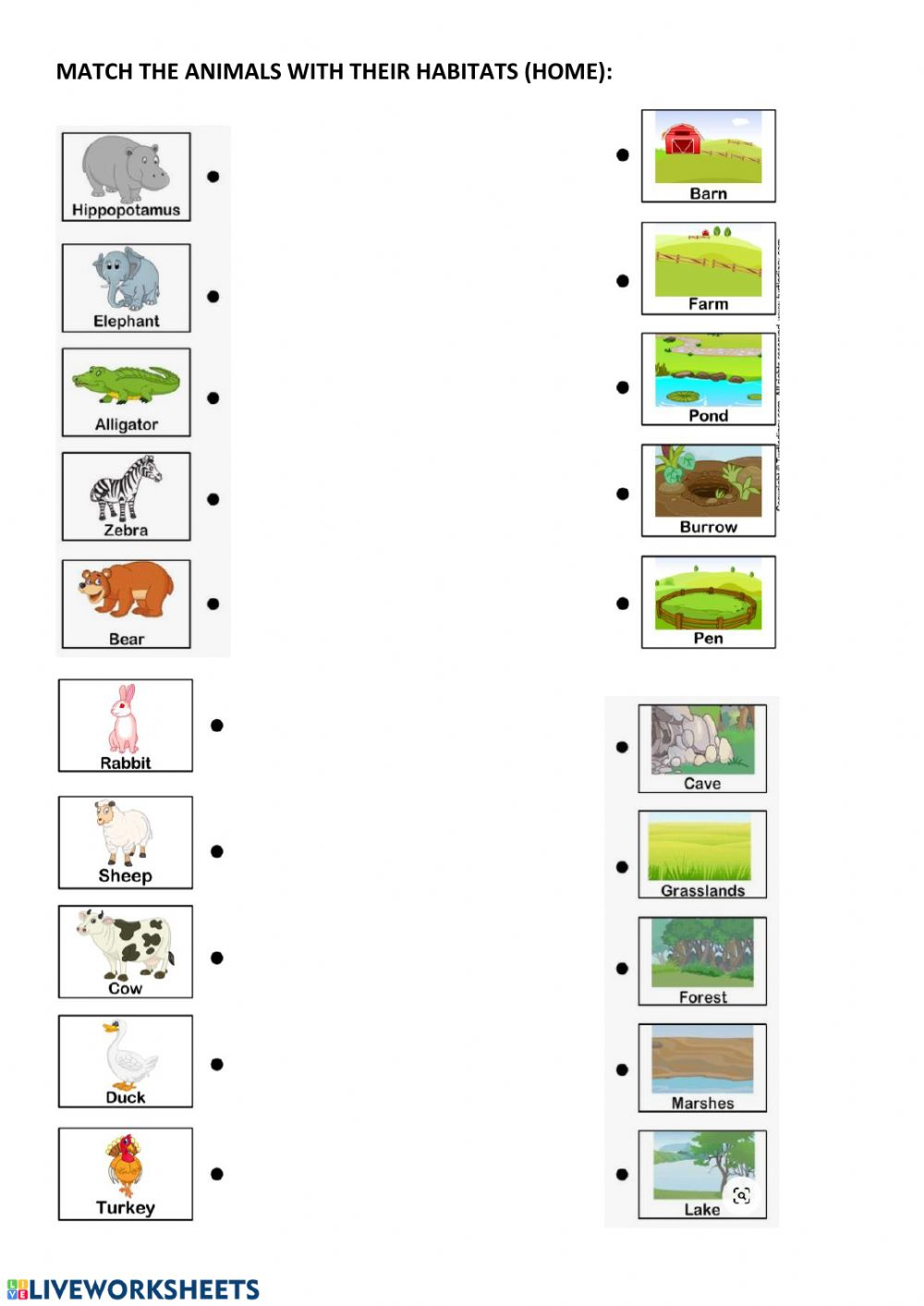 hight resolution of Animal habitats and home worksheet