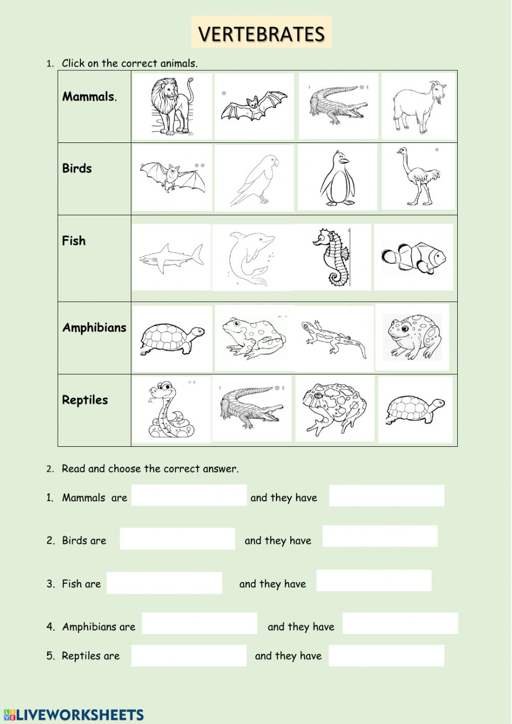 hight resolution of VERTEBRATES CLASSIFICATION worksheet