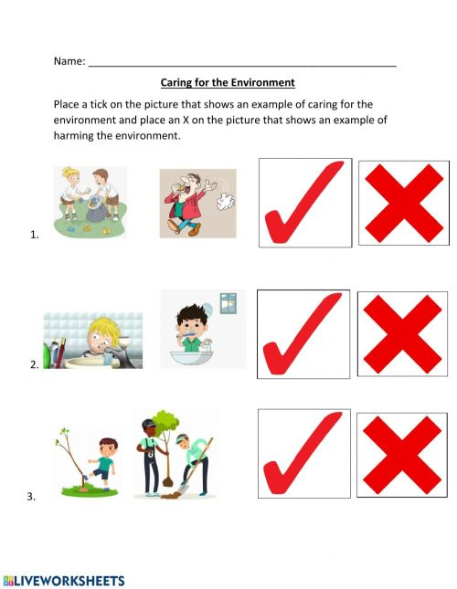 small resolution of Caring for the Environment worksheet