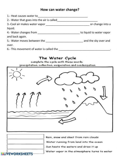 small resolution of water cycle interactive activity