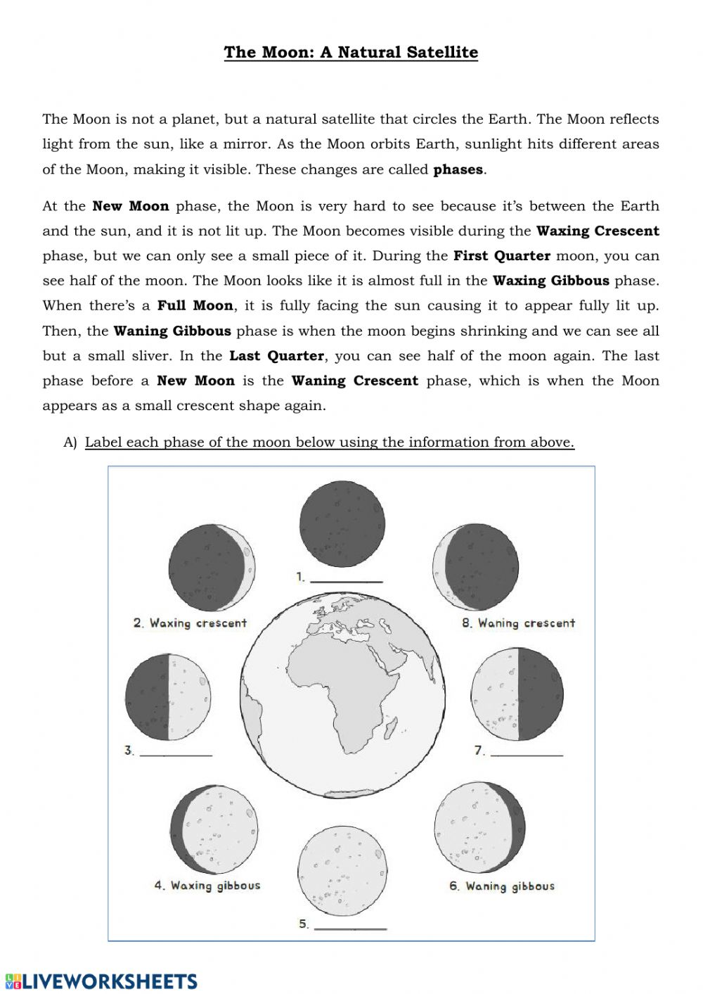 medium resolution of The Moon Phases and Eclipse worksheet