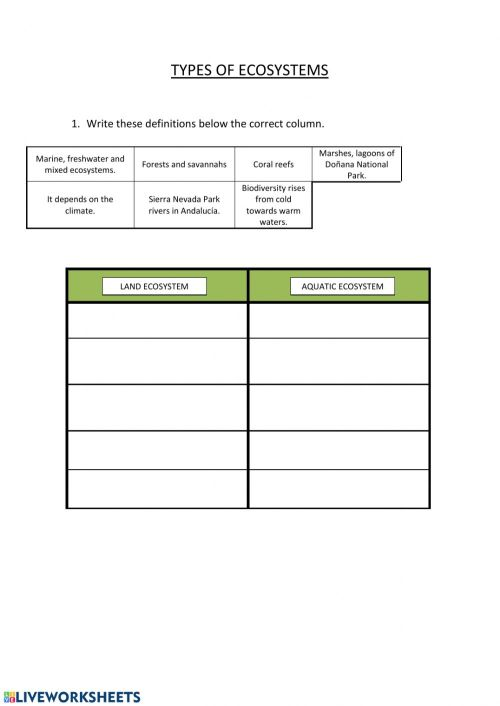 small resolution of Types of ecosystems and Biodiversity worksheet