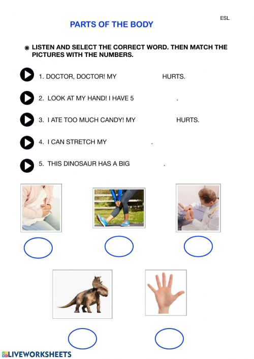 small resolution of Parts of the body worksheet for GRADE 1