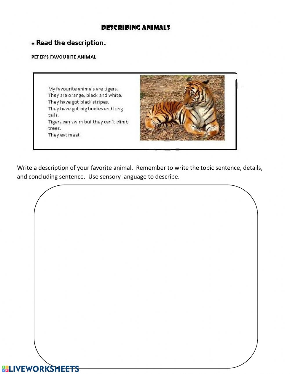 hight resolution of Writing a descriptive paragraph worksheet