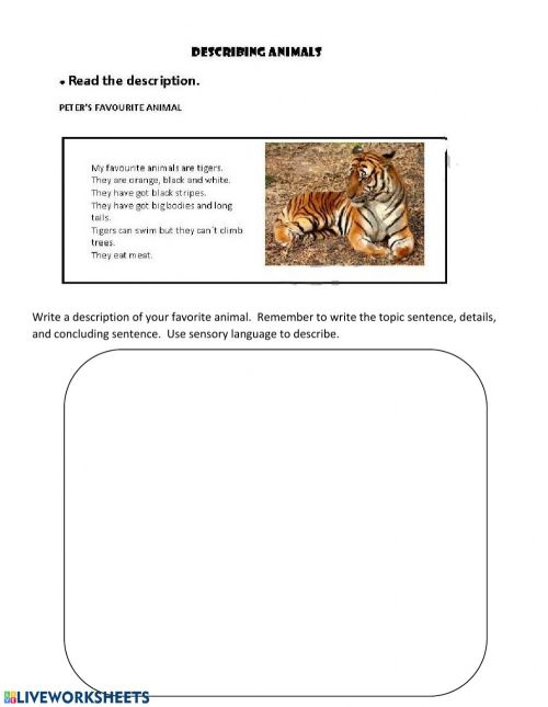 small resolution of Writing a descriptive paragraph worksheet