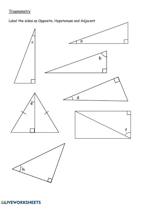 small resolution of Label sides in right angle triangles worksheet