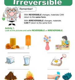 Reversible and irreversible changes worksheet [ 1413 x 1000 Pixel ]