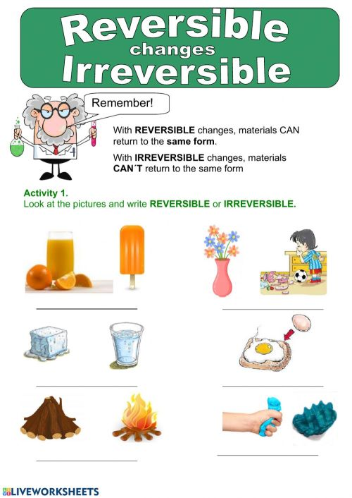 small resolution of Reversible and irreversible changes worksheet