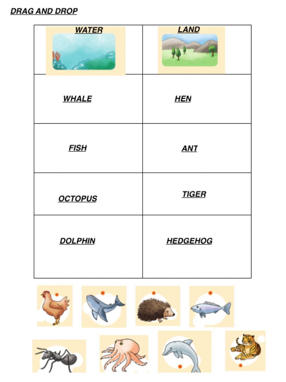 hight resolution of Land and water animals worksheet