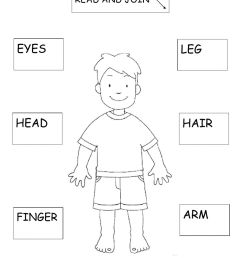 Body parts exercise for 2ND GRADE [ 1413 x 1000 Pixel ]