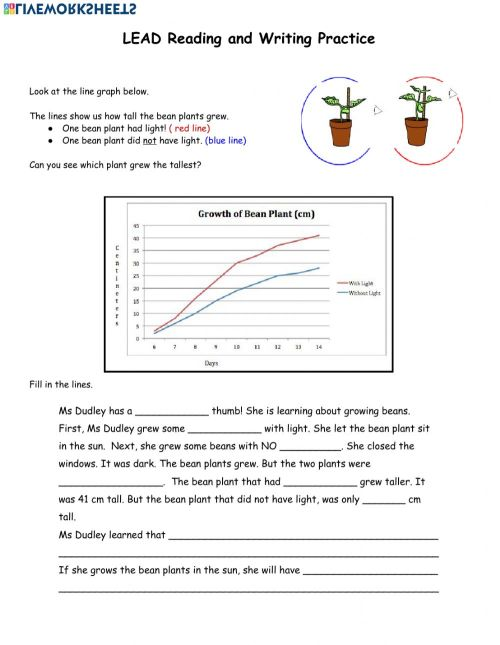small resolution of Bean Plant Line Graph worksheet