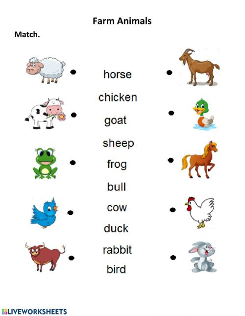 small resolution of Farm Animals interactive worksheet for 1st Grade