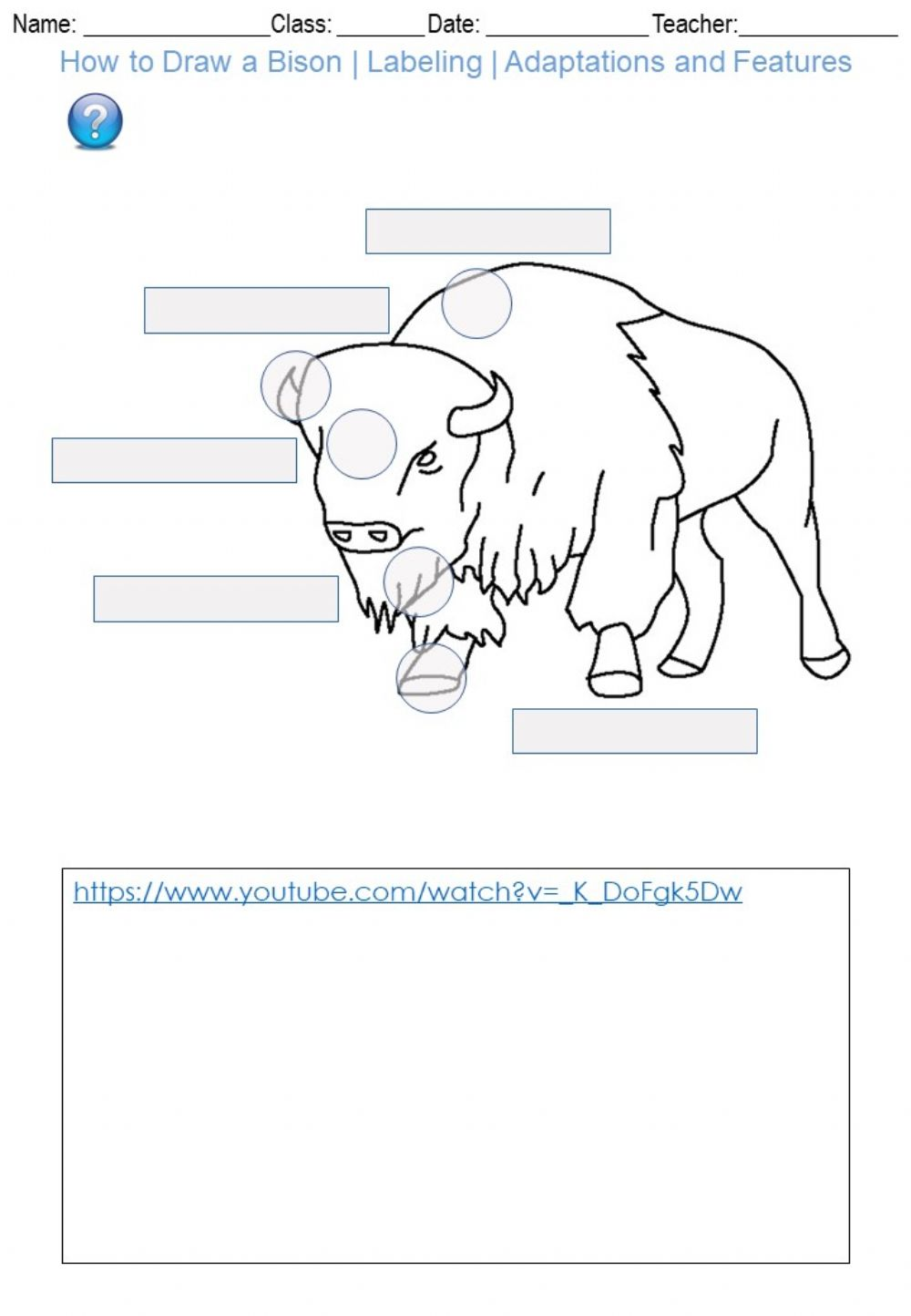 hight resolution of How to Draw a Bison - Labeling - Adaptations and Features worksheet