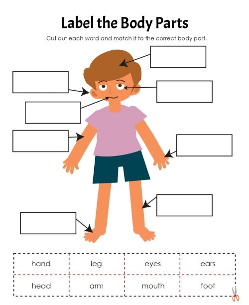 small resolution of Body Parts interactive exercise for Grade 1