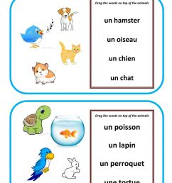 Animaux de compagnie-pets in French worksheet [ 1413 x 1000 Pixel ]