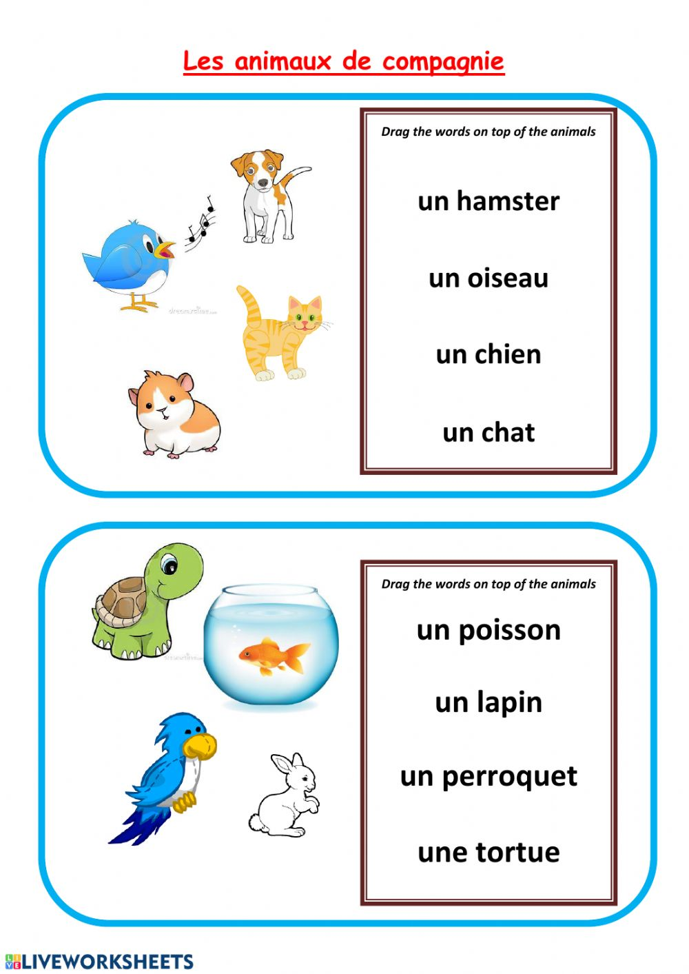 hight resolution of Animaux de compagnie-pets in French worksheet
