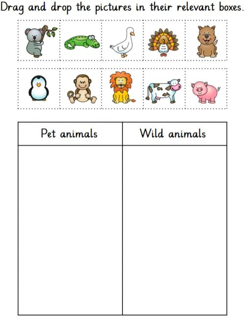 small resolution of Pet and wild animals worksheet