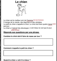 Lecture comprehension-reading C (French) activity [ 1413 x 1000 Pixel ]