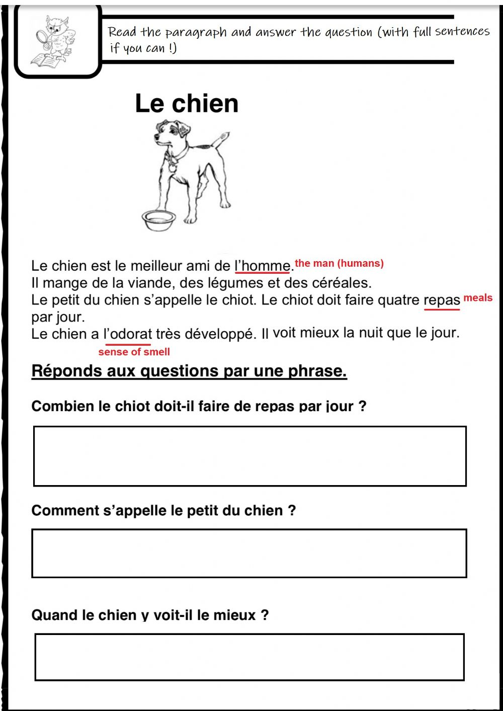 hight resolution of Lecture comprehension-reading C (French) activity