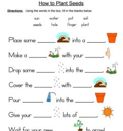 How to Plant Seeds worksheet [ 1217 x 1000 Pixel ]