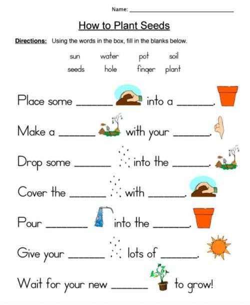 small resolution of How to Plant Seeds worksheet