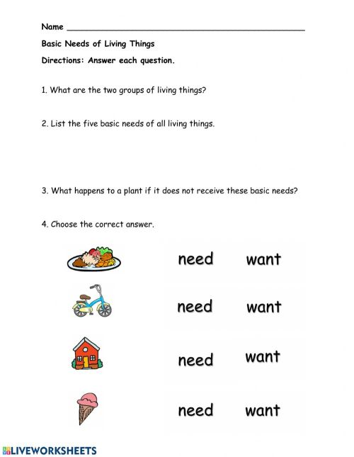 small resolution of Basic needs of living things worksheet
